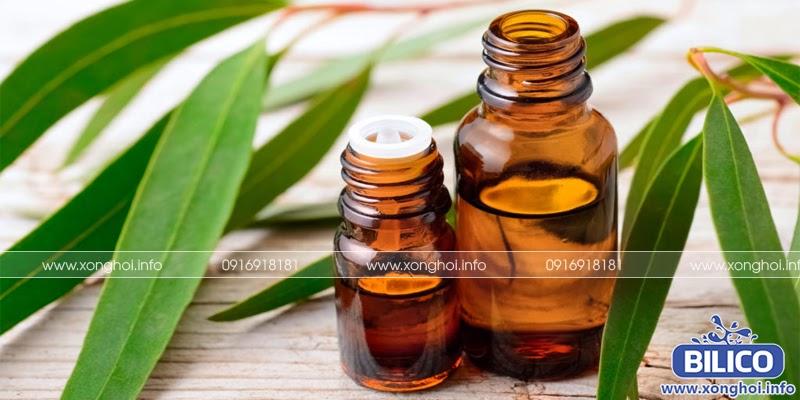 Tinh dầu khuynh diệp dùng xông hơi